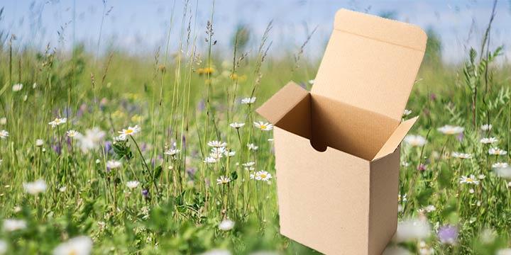Ist Graskarton das Verpackungsmaterial der Zukunft?