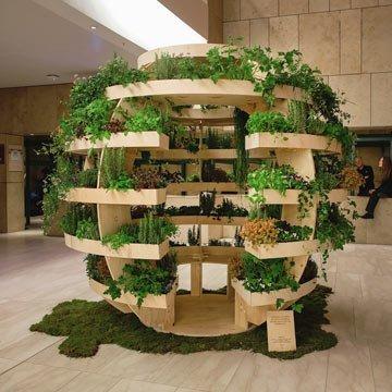 Einen Indoor-Garten selber bauen