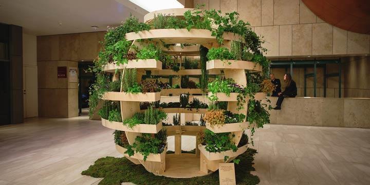 Indoor Farming: Einen Indoor-Garten selber bauen
