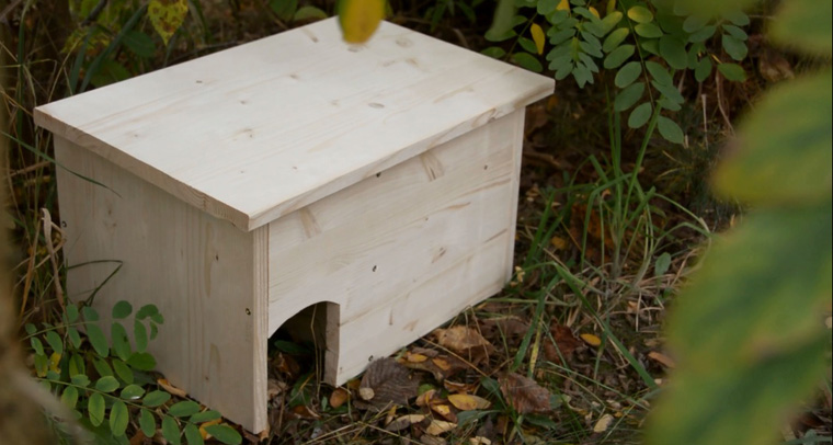 Ein Igelhaus ist einfach gebaut und bietet den Winterschläfern ein sicheres Quartier