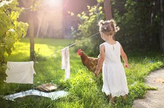 Fünf Wege zum grünen Zuhause