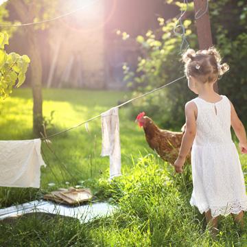 In fünf Schritten zum  grünen Heim
