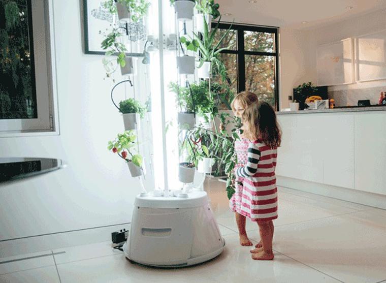 Indoor-Gardening bietet zudem die Möglichkeit, Kinder täglich erleben zu lassen, wo ihre Nahrung herkommt und wie sie wächst.