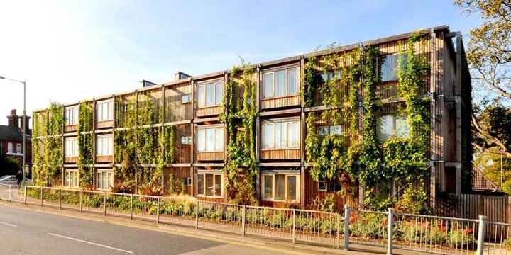 Endlich grüne und fröhliche Sozialwohnungen: Hier lässt es sich leben!