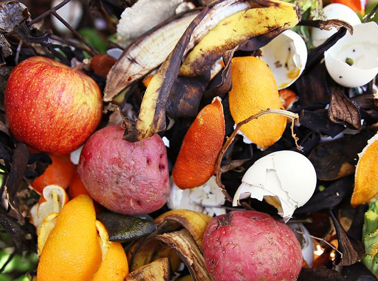 Bioabfälle liefern wichtige Nährstoffe