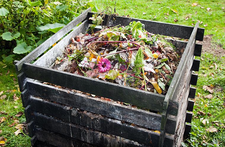 Kinderleicht einen Kompost anlegen