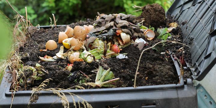 Wohin mit dem Laub? Wir legen Kompost im Garten an
