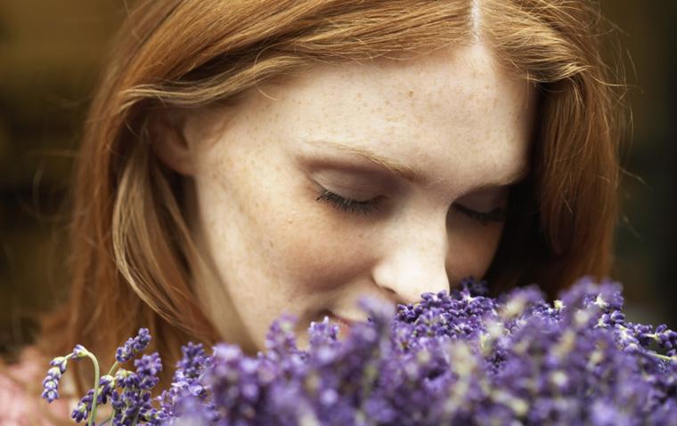 Lavendel ist gut für alle Sinne