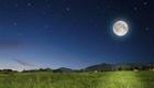 Wie der Mond bei der Gartenarbeit helfen kann