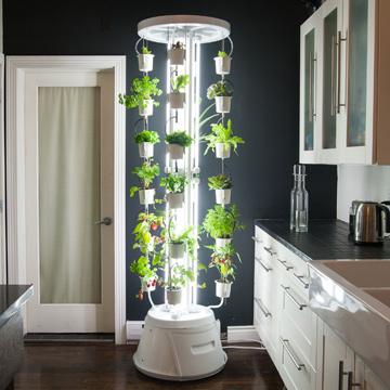 Selbstversorger werden mit Indoor-Gardening-System