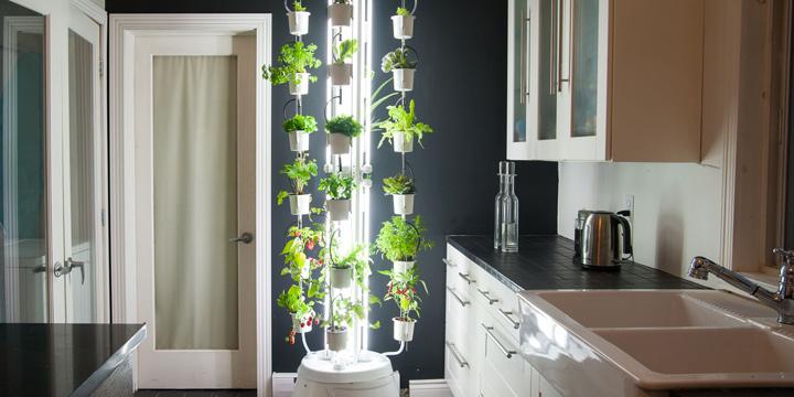Gartengestaltung tolle Tipps für da ganze Jahr