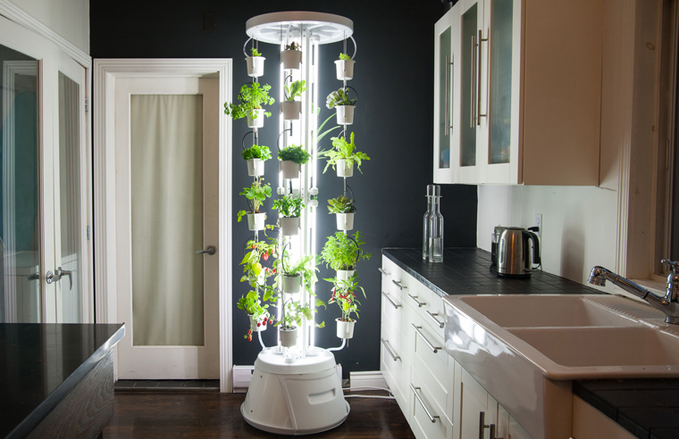 hydroponic f r zuhause ein toller indoor garten f r alle selbstversorger. Black Bedroom Furniture Sets. Home Design Ideas