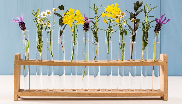 Nicht nur beim Frühjahrsputz gilt: beim Saubermachen muss man nicht zur Chemiekeule greifen.
