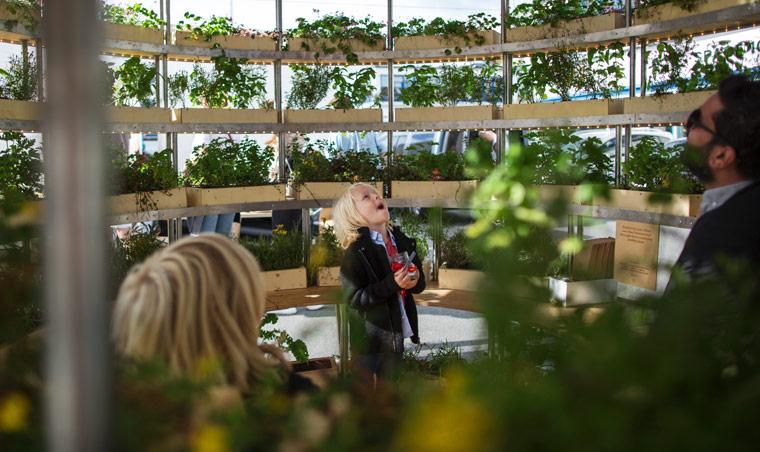 IKEA Anleitung für Indoor-Garten