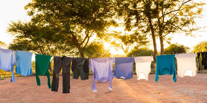 Naturreines Waschmittel aus Efeu selber machen