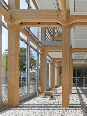 Das Holz-Skelett des Gebäudes in Zürich ist einzigartig