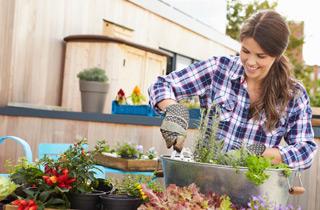 Warum sich Gärtnern ohne Torf lohnt