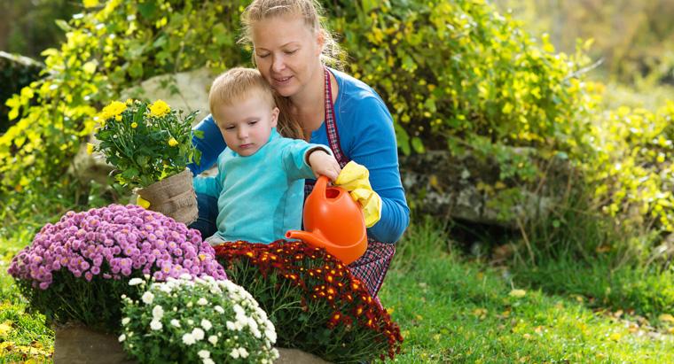 Was im Herbst anpflanzen?