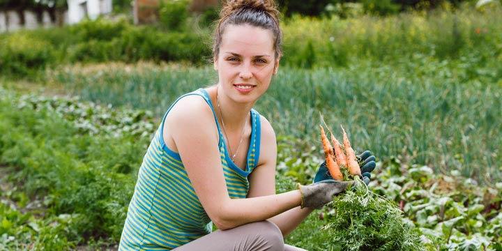Der Bio-Garten: Einige Tipps für das nachhaltige Gärtnern