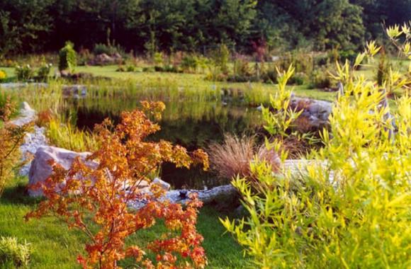 Gartenteich schwimmteich tiere menschen entspannung pflanzen for Naturteich garten