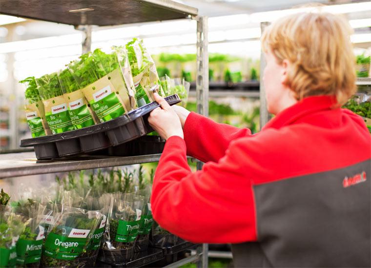 Weniger Plastikmüll beim Pflanzentransport durch Mehrwegsystem