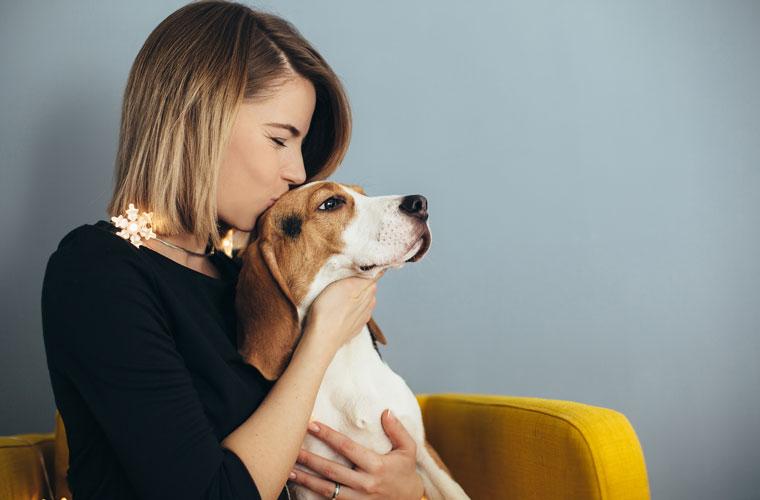 nachhaltiges Hundefutter
