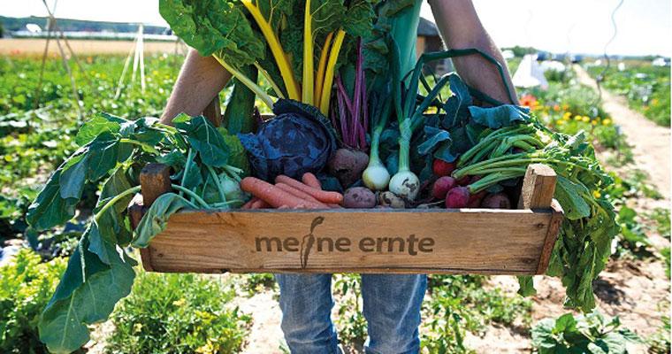 Meine Ernte ermöglicht Städtern den eigenen Gemüseanbau