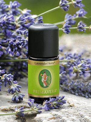 Lavendel ist ein natürlicher Entspannungshelfer
