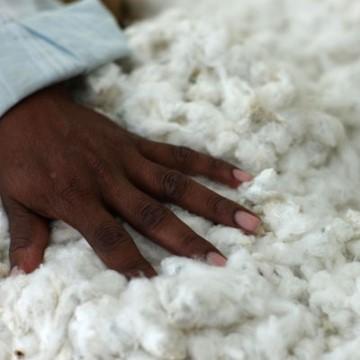 5 gute Gründe für faire Baumwolle