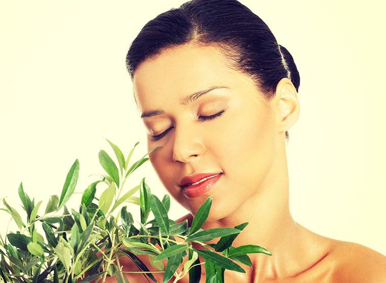 Olivenöl zur Haut und Haarpflege