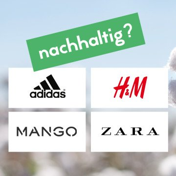 Ist die neue Nachhaltigkeit von H&M und Co. echt?