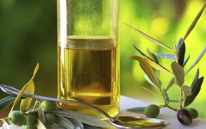 Olivenöl Winterhaut