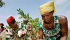 Der Erfolg von Cotton made in Africa