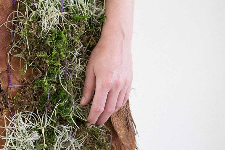 Pflanzenweste reduziert Feinstaub