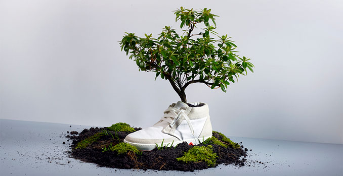 Kompostierbare Schuhe. Stylish und nachhaltig © Oat Shoes