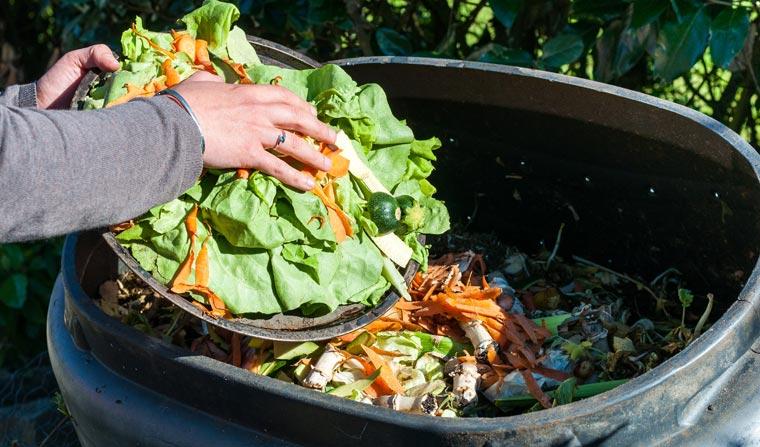 Der richtige Umgang mit Abfall ist ein wichtiger Aspekt, wenn es um Umweltschutz geht