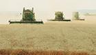 Jährlich gehen zwölf Millionen Hektar Acker verloren