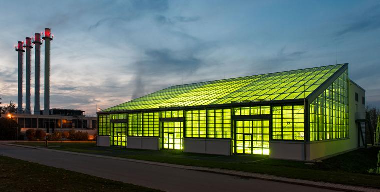 Das Münchner Algentechnikum ist ein weltweit einzigartiges Forschungszentrum