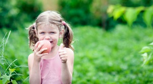 Schulobst NRW Apfel