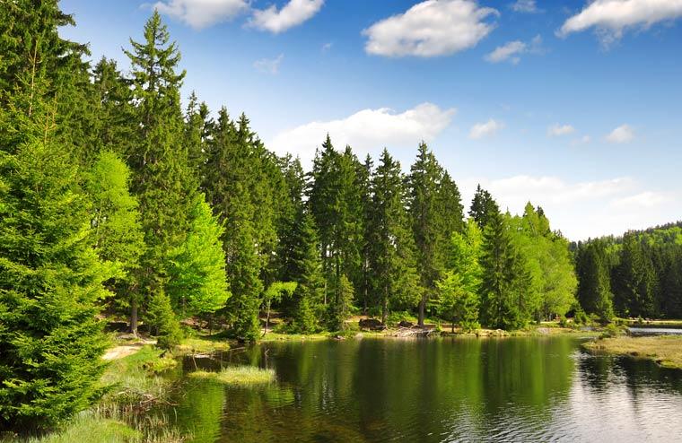 Ein Open-Air-Semester für die Natur