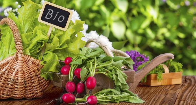Bio Lebensmittel Landwirtschaft
