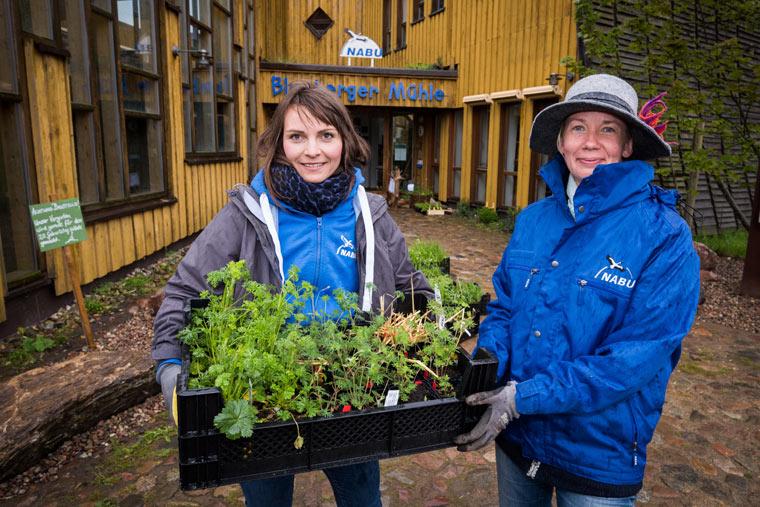 NABU-Naturerlebniszentrum eröffnet Naturgarten