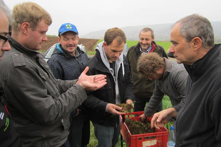 Der Öko-Landbau unterstützt den Aufbau und Erhalt ausgewogener Böden.