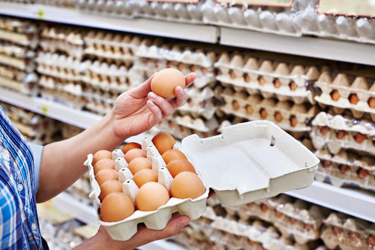 Bio-Eier versus konventionelle Eier