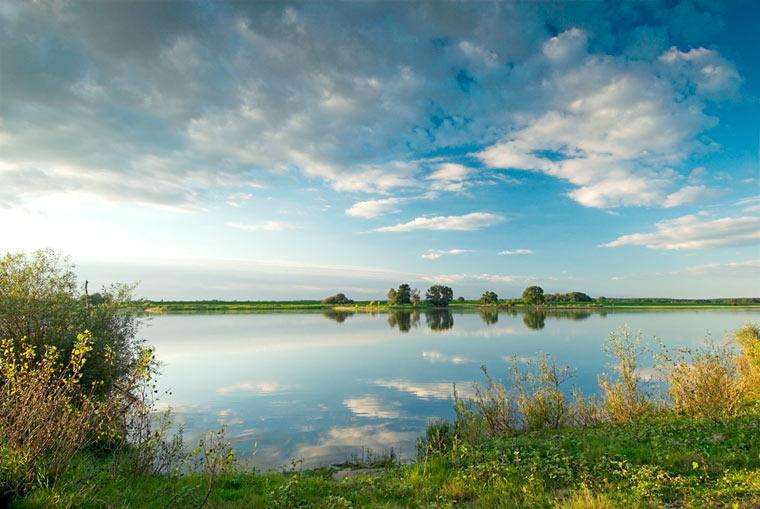 biologische Vielfalt erhalten Naturschutz an der Elbe