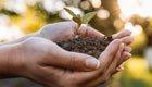 Endspurt zur Anmeldung für das Projekt Nachhaltigkeit