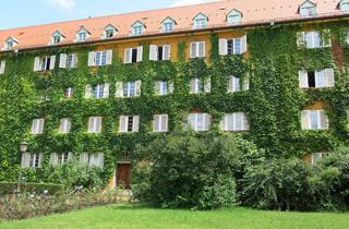 Mehr Grün für Großstadt-Gebäude