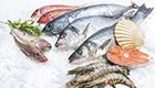 Neue Richtlinien: Öko Fisch leichter erkennen