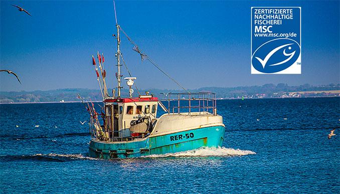 Fischerboot auf dem Meer