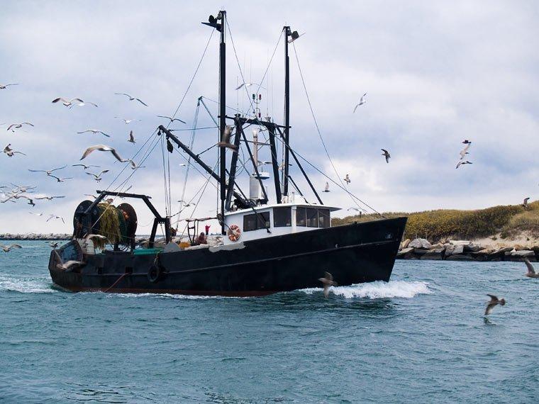 Nachhaltigkeit und Ostseefischerei durch neue Fangmengenquote gesichert